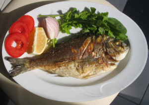 fish-1327431-1279x900